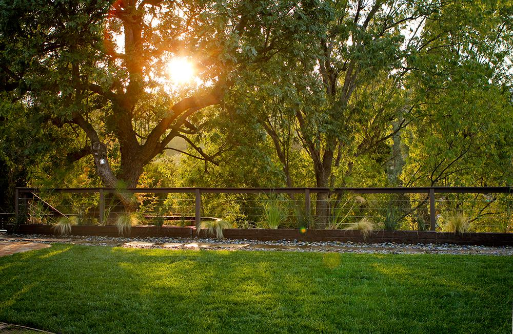 After | Rear Hillside Property Fence Line