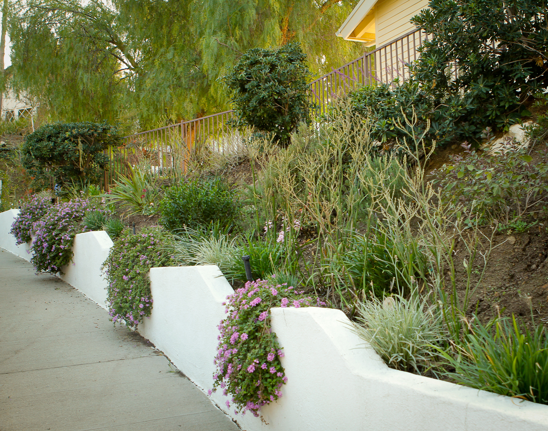 After | Front Property Sidewalk Garden Wall