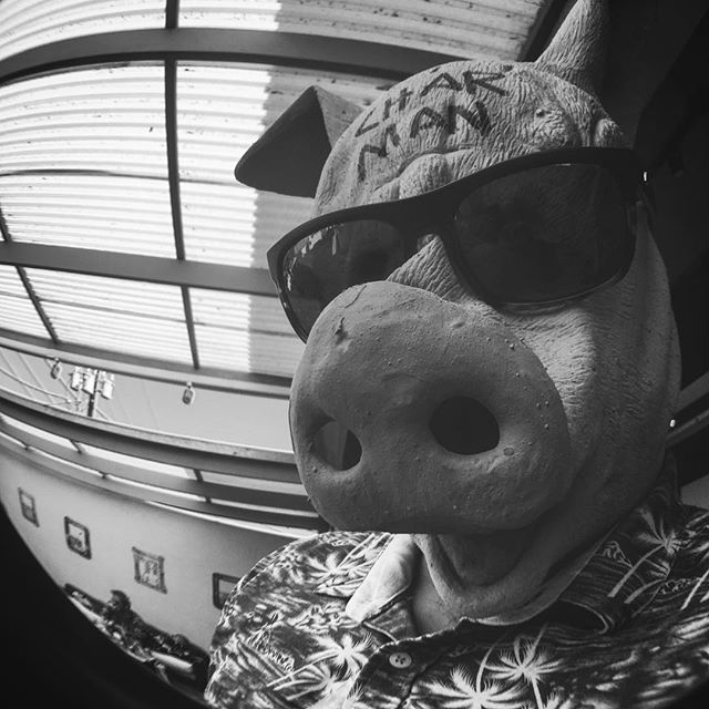 #charman #Pig #burnlocal #latergram #fisheye #hotsauce #blackandwhite #santabarbara #funkzone #gonegallery #gone #throwbackthursdays #sb #spanishbasil #whatchyoulookinat