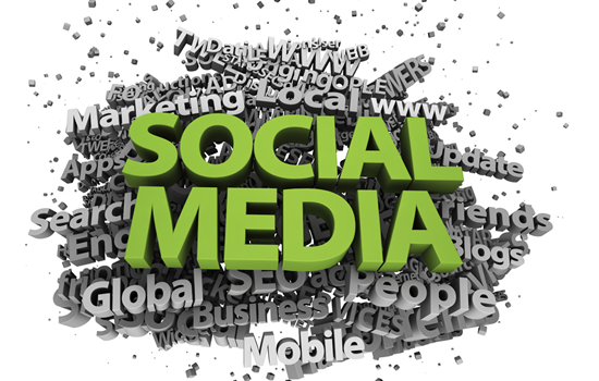 Blog & Social Media Management