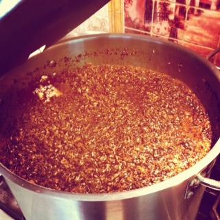 stout grains.JPG