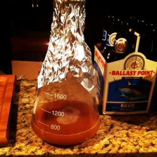 yeast starter.JPG