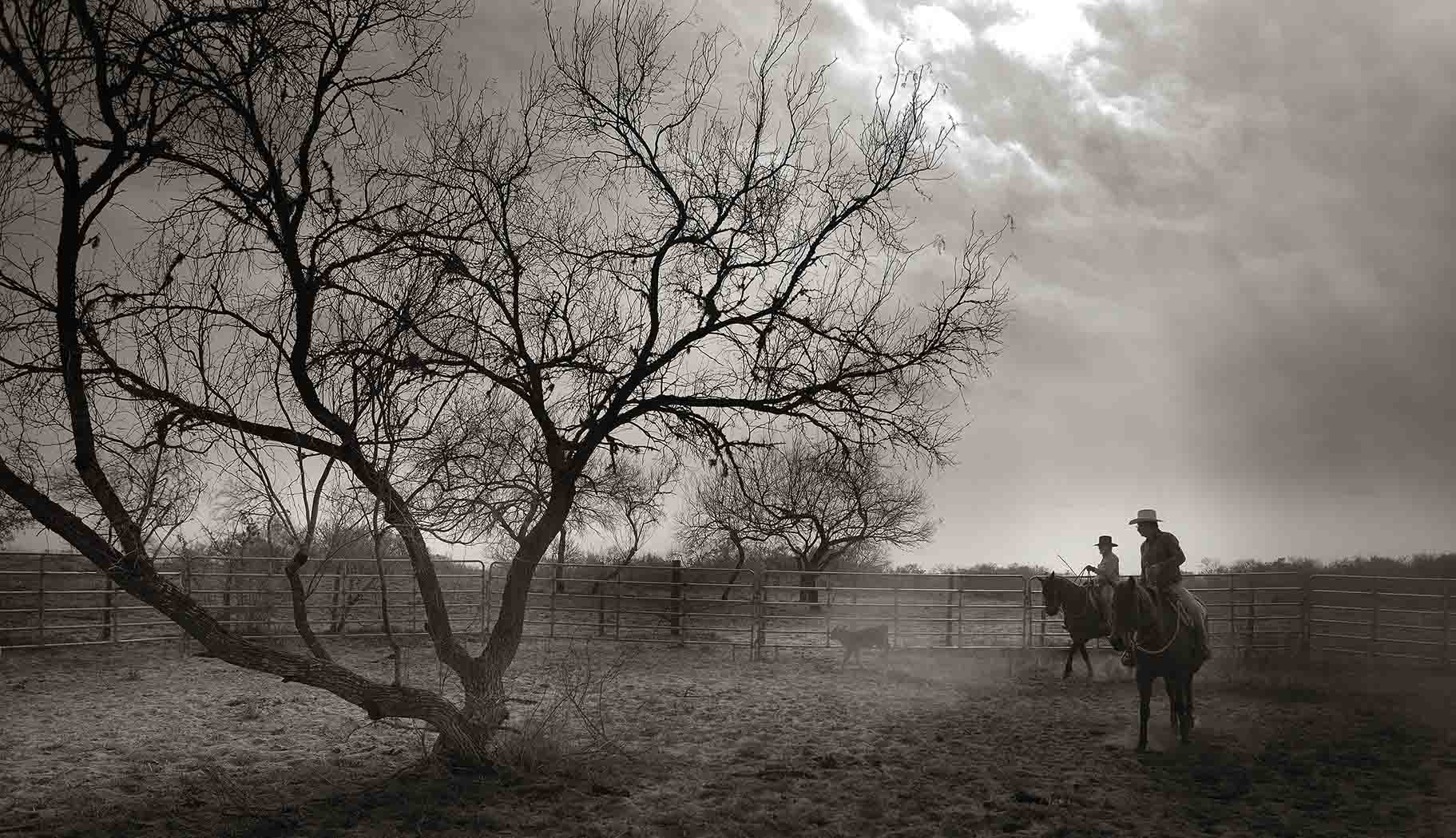 "Untitled (Cowboy)  Gary Lankford GLK116 Archival Pigment Print on Hahnemuhle Fine Art Paper Paper: 36"" x 58"", Image: 29"" x 50"""