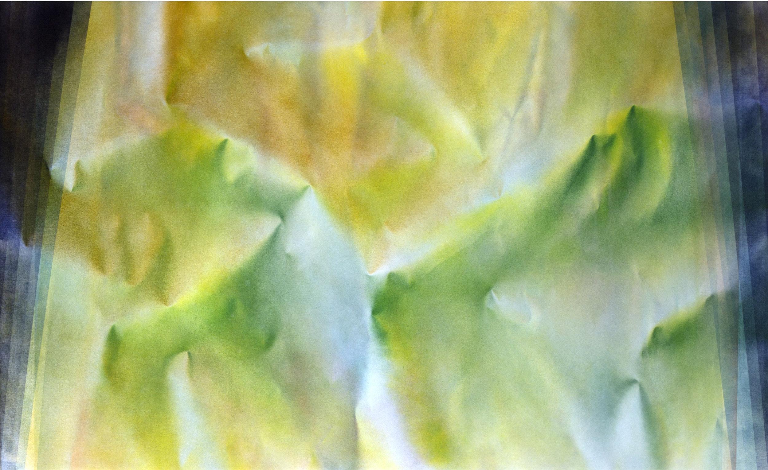 """Untitled  Thomas Zitzwitz ZW168 Acrylic on Canvas 46"""" x 75"""""""