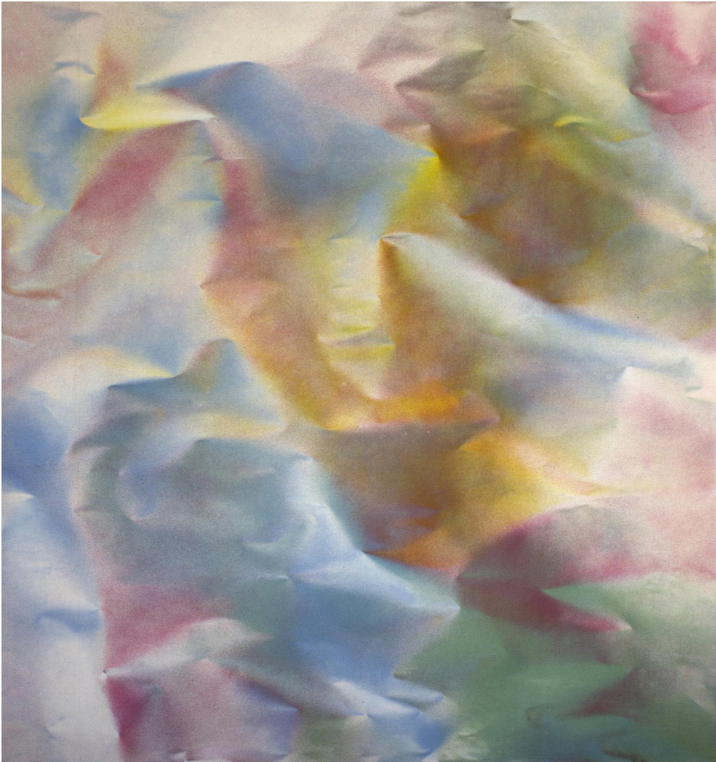"""Untitled  Thomas Zitzwitz ZW169 Acrylic on Canvas 34"""" x 48"""""""