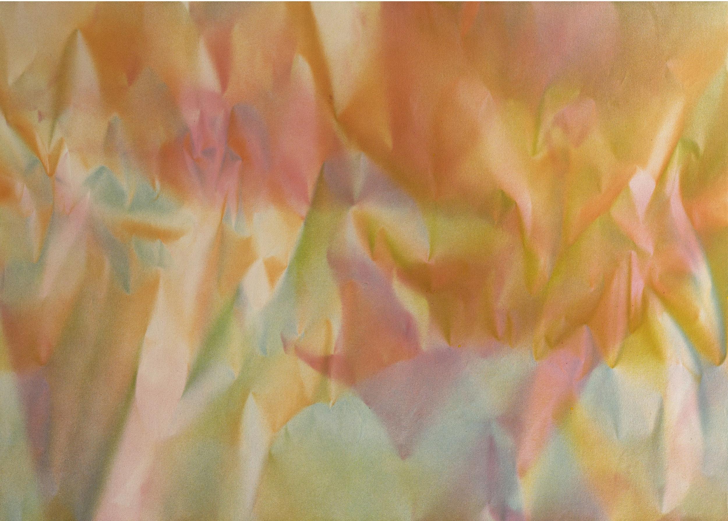 """Untitled  Thomas Zitzwitz ZW170 Acrylic on Canvas 34"""" x 48"""""""