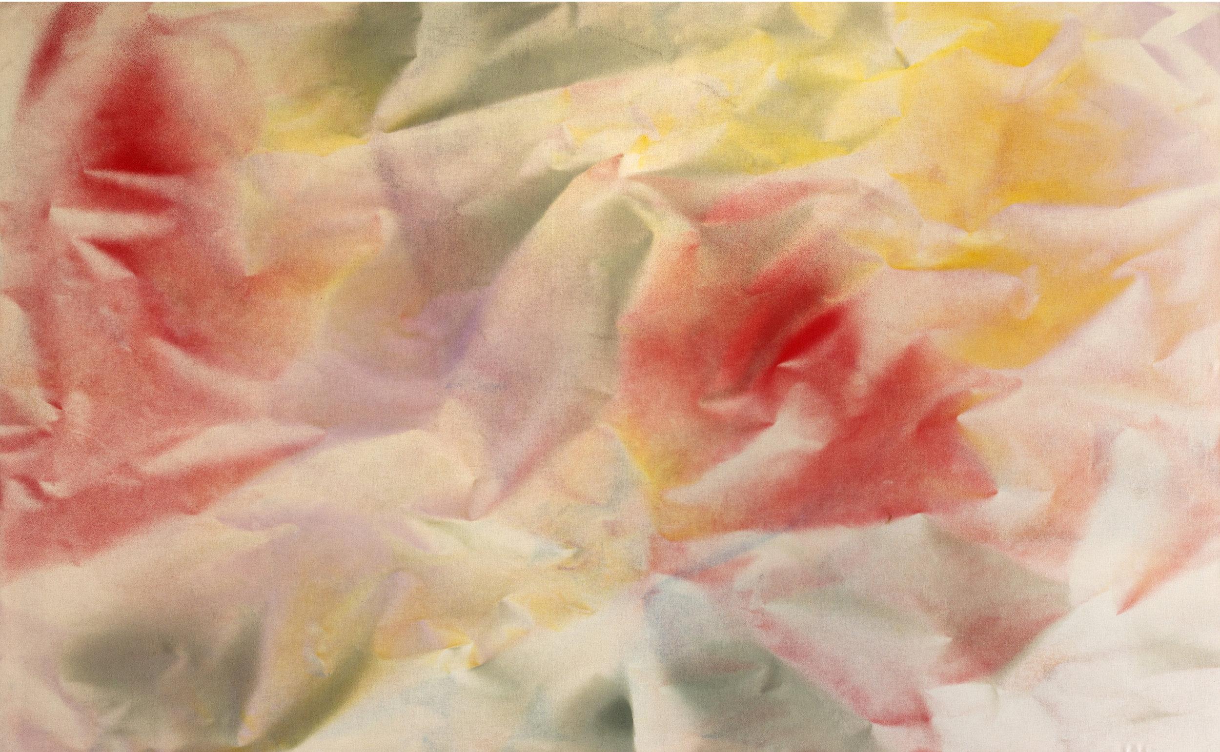 """Untitled  Thomas Zitzwitz ZW171 Acrylic on Canvas 45"""" x 75"""""""