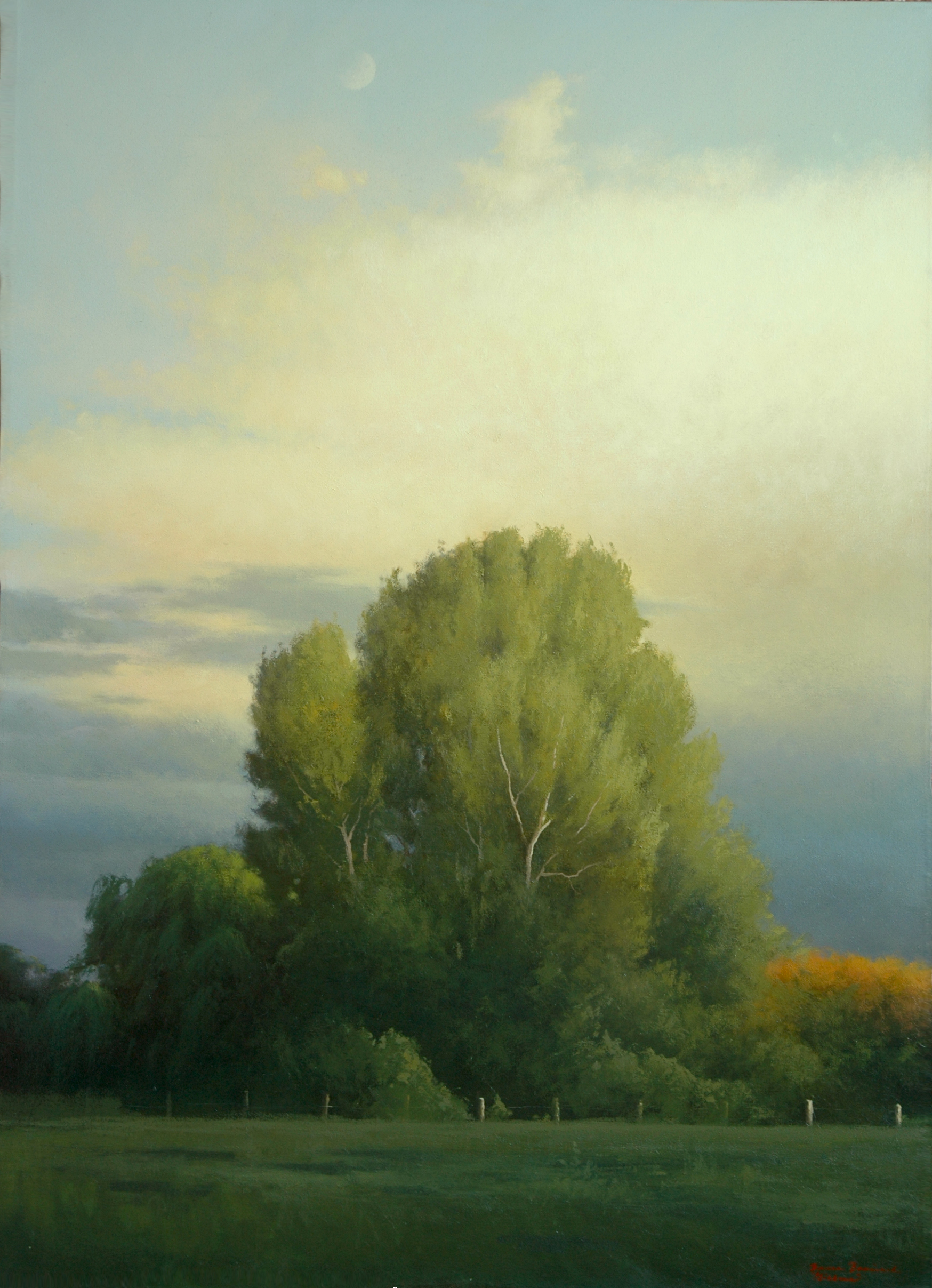 "Gibbous  Bruce Brainard BR971 Oil on Canvas 50"" x 32"""