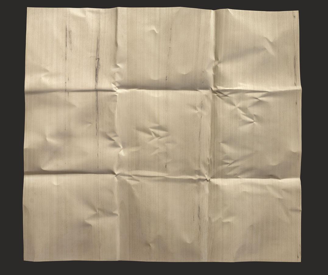 """Papier déplié 9 plis  Christian Renonciat Ayous Wood 40"""" x 44"""""""
