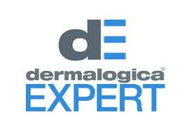 expert logo.png