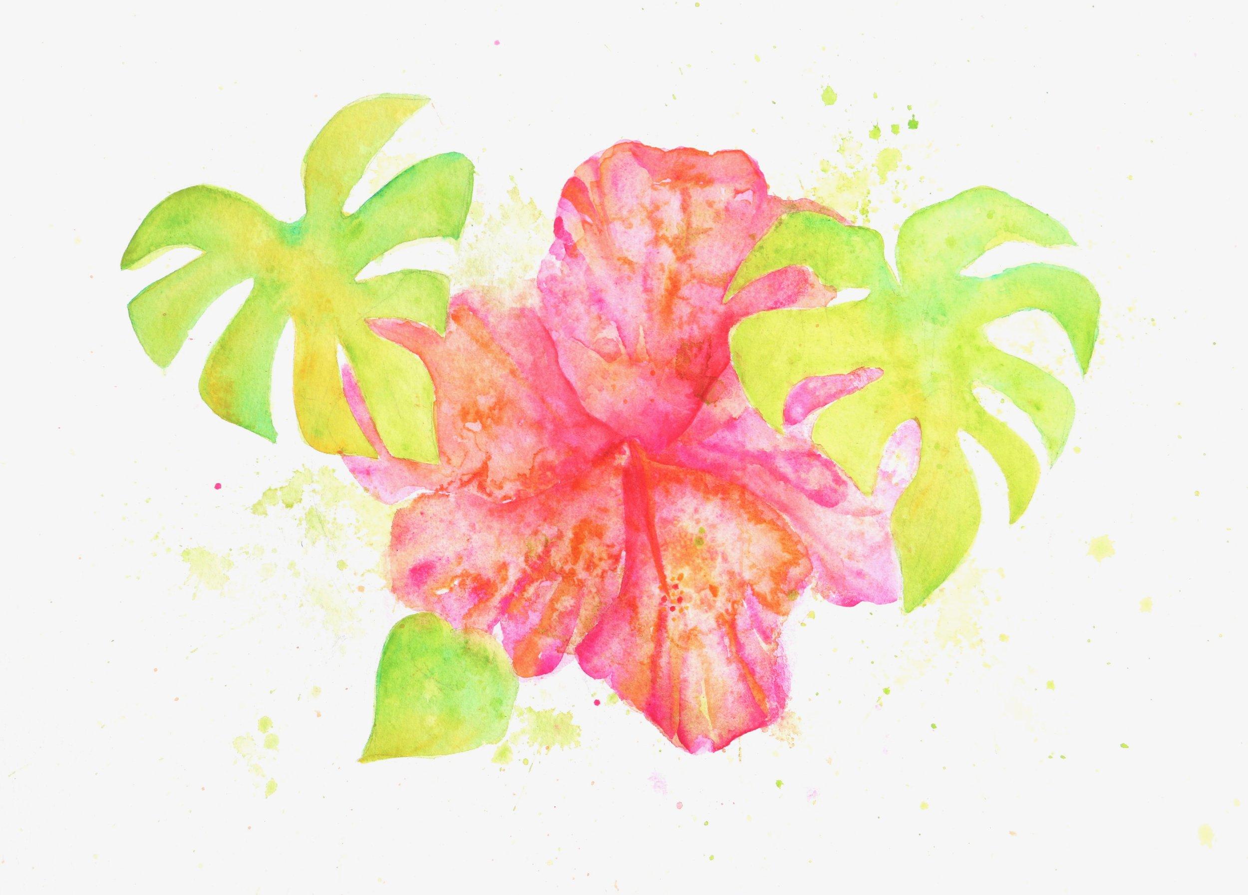 Hibiscus for Social.jpg