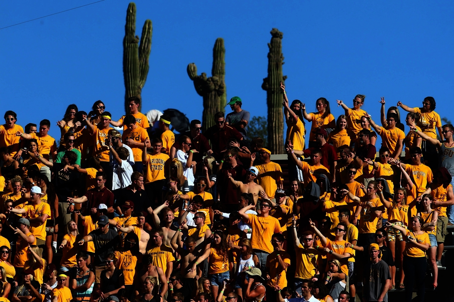 Are those cacti so high that they rise above the stadium seating, or did someone bring them to the game? Or, third possibility, were they brought to the game? Who brings cacti? ASU fans, that's who.