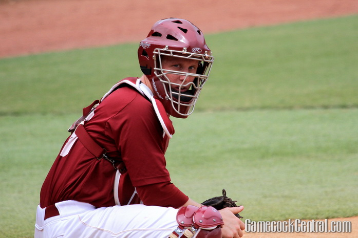 Staff Photo by Paul Collins: Koch is South Carolina's most experienced catcher entering 2015.