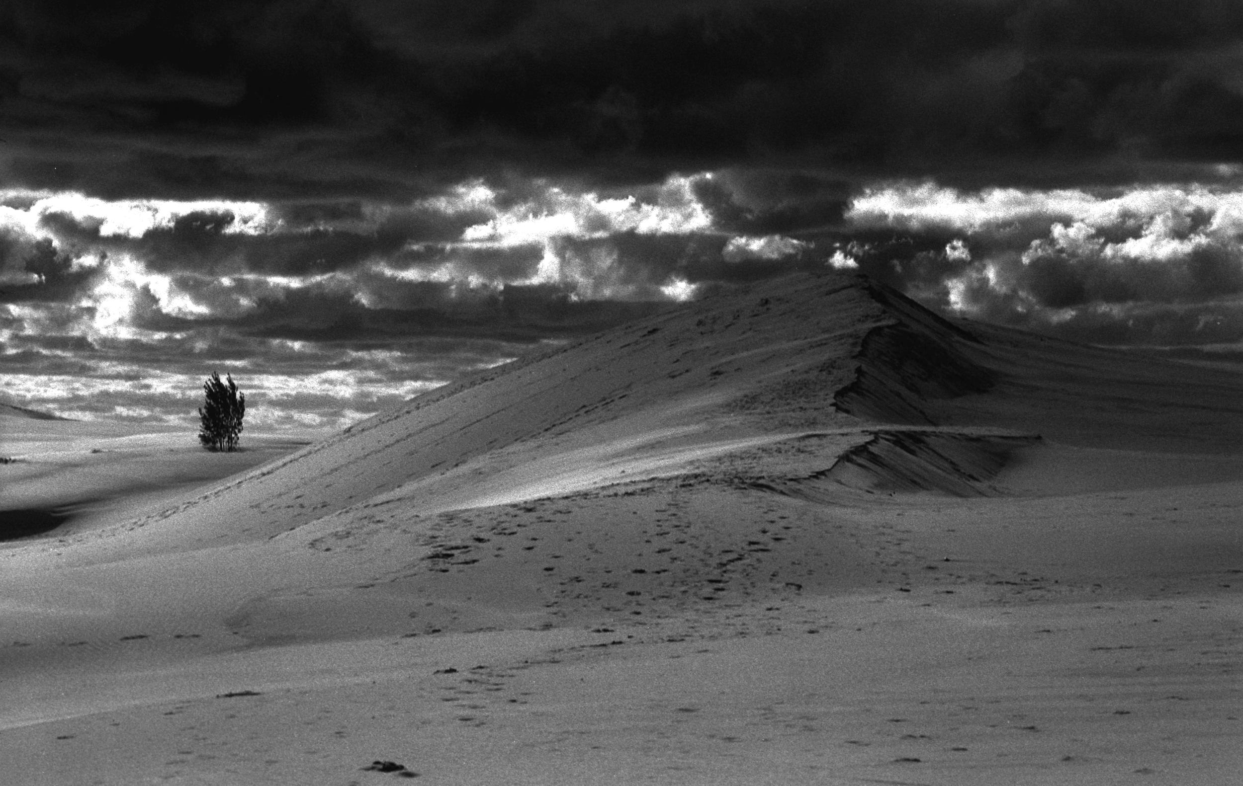 Silver Lake Sand Dunes I, 2013