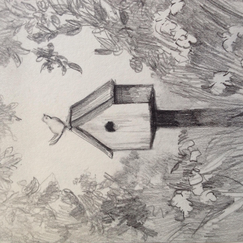 Bird on top of birdhouse