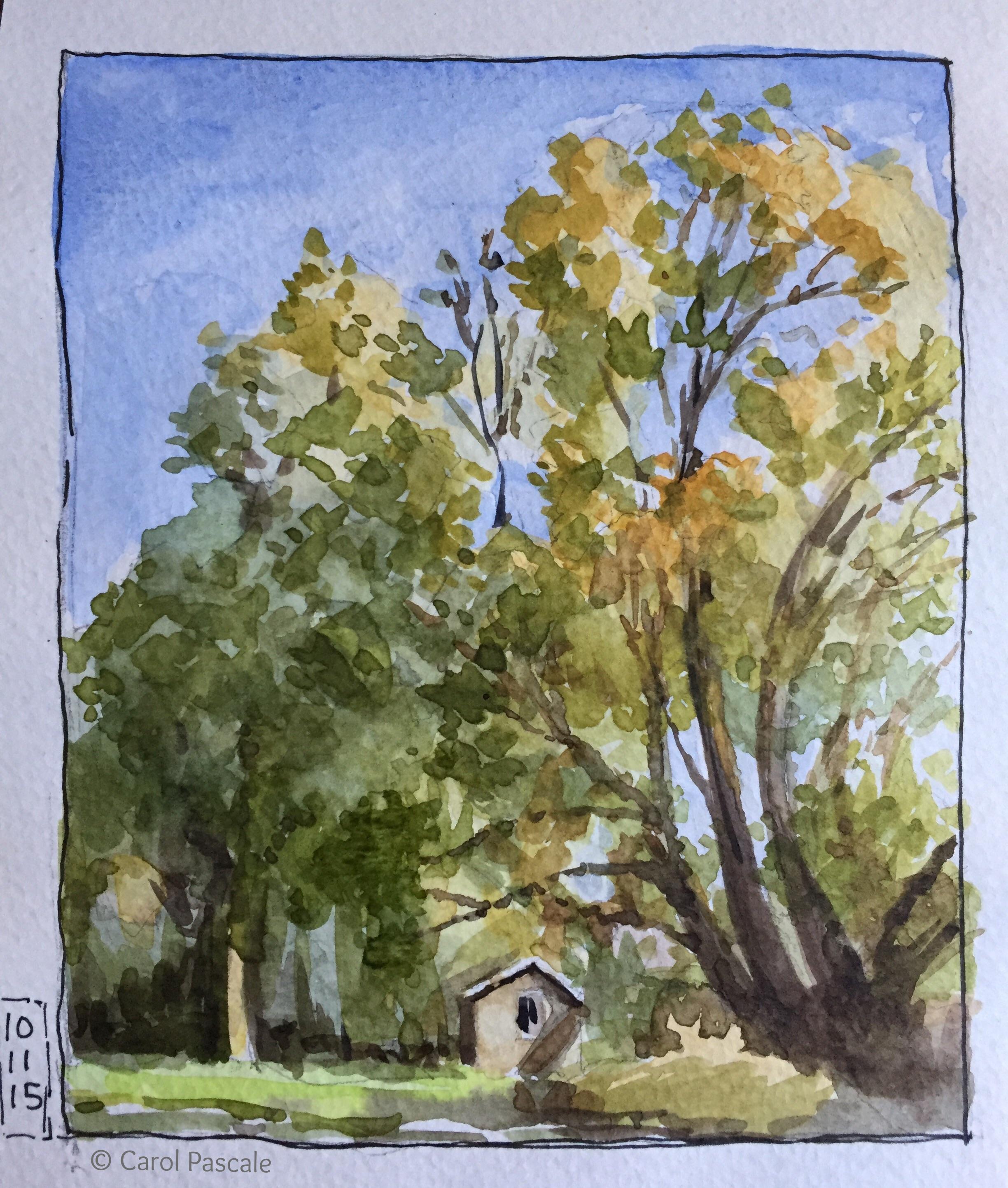 Watercolor 10/15