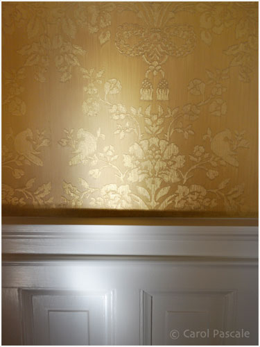 Silk Damask Paint and Plaster Finish