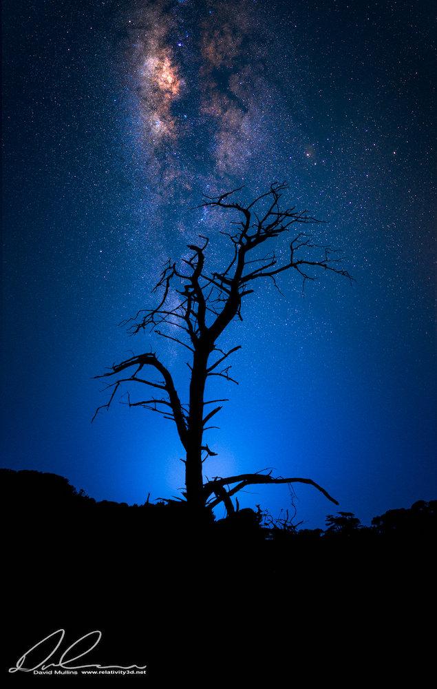 Point Cook Homestead Milkyway