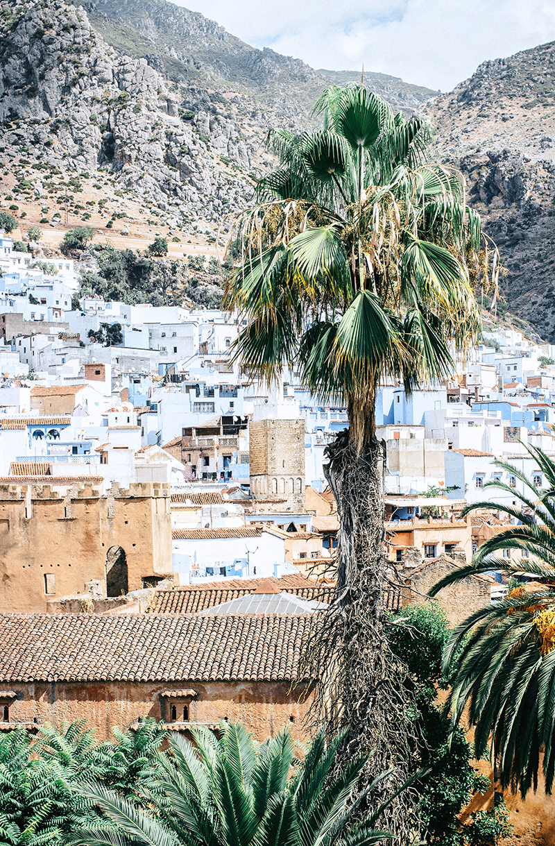 ROSE & IVY Journal Wanderlust Morocco
