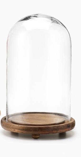 glass-cloche-bell-jar-display_h1130-35_mag.jpg