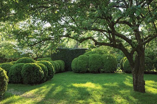 ROSE & IVY Journal Garden Dreamer An Editor's Long Island Oasis