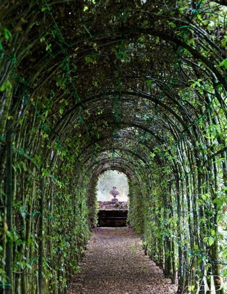 ROSE & IVY Journal An Elaborate Tuscan Garden