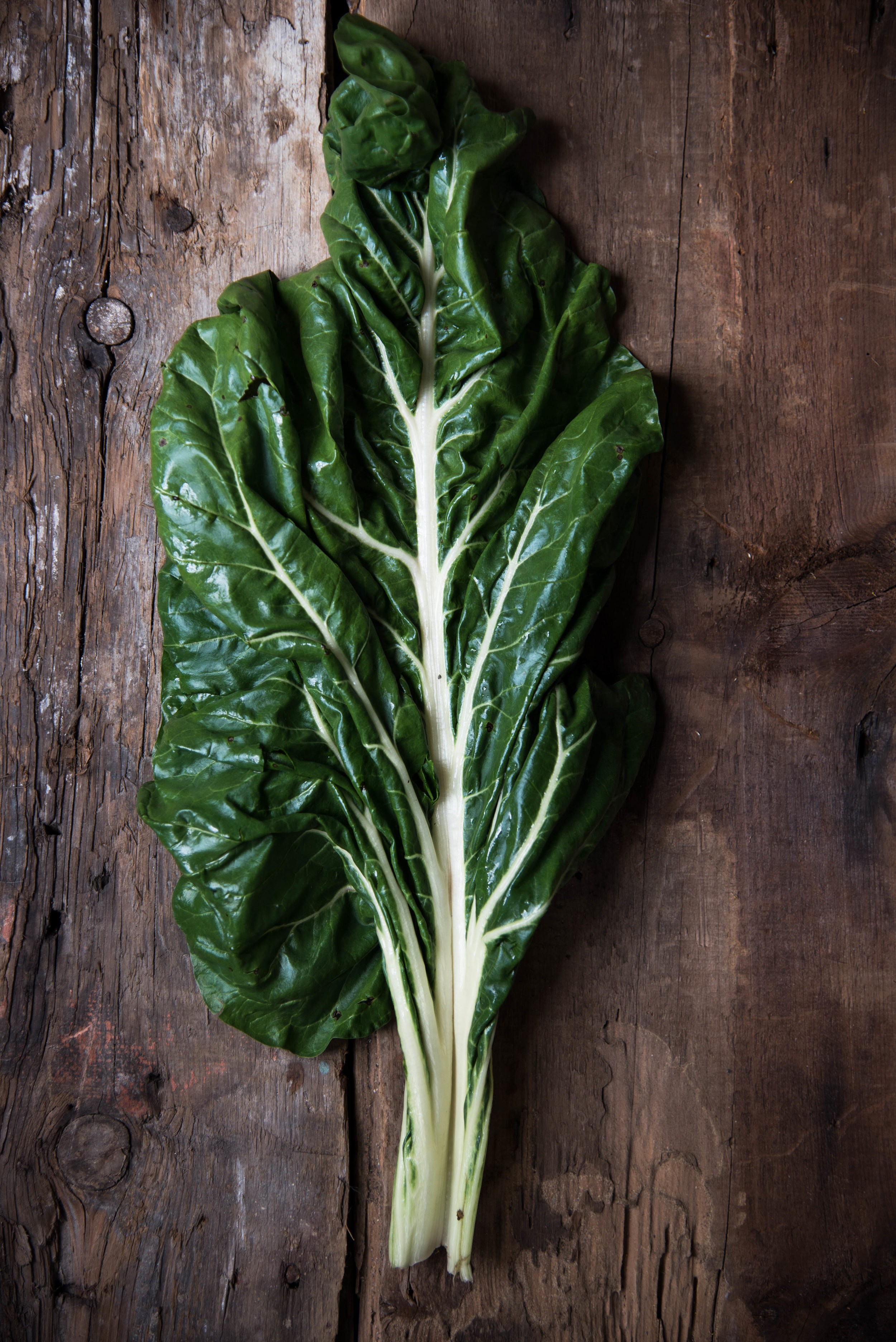ROSE & IVY Journal Get to Know Your Greens Swiss Chard