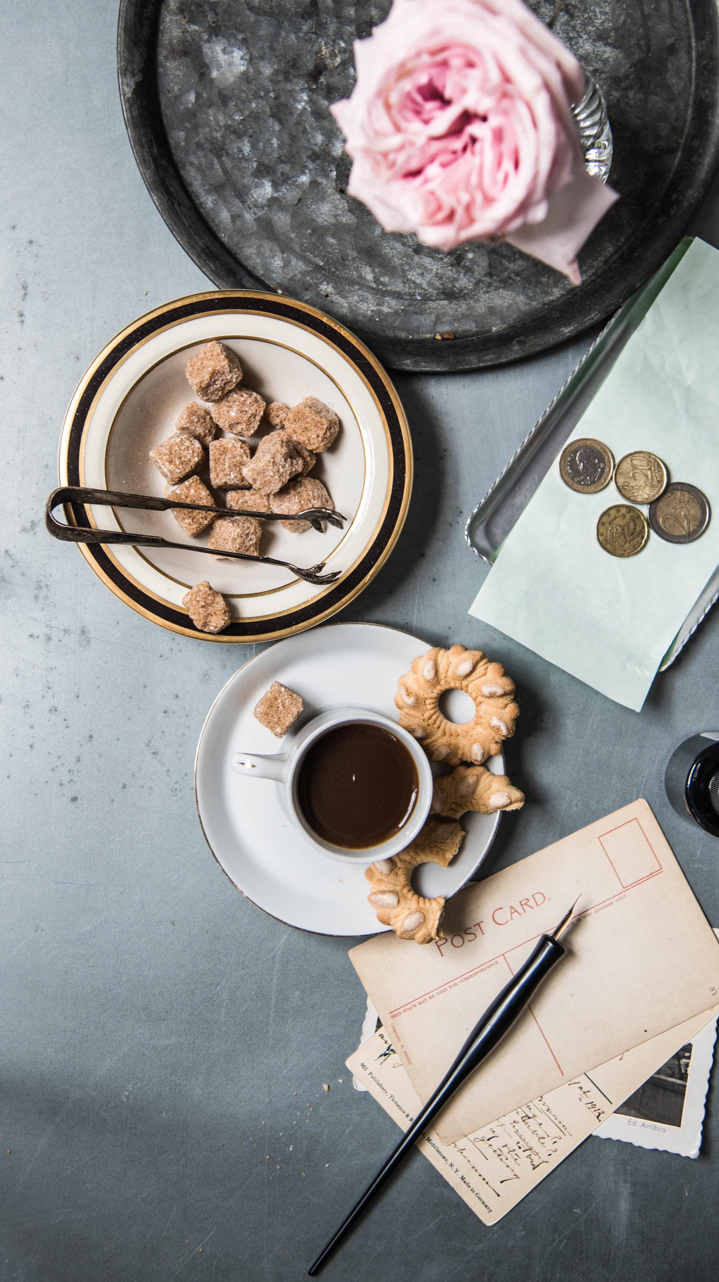 ROSE & IVY Journal New Cookbooks for Fall Tasting Rome