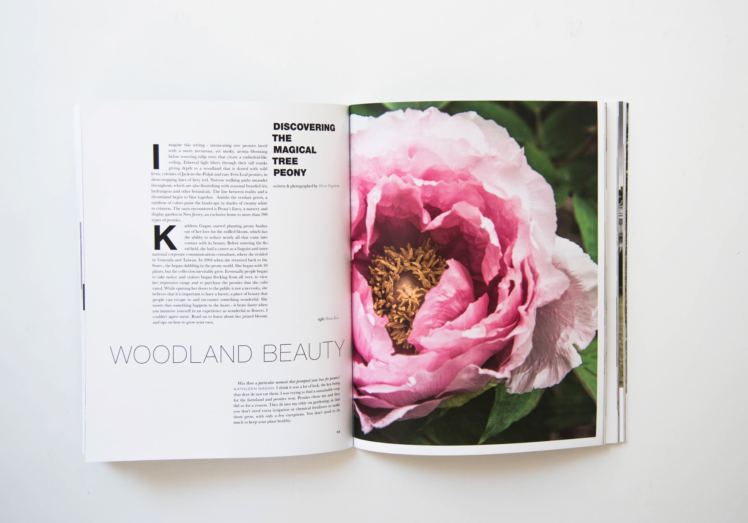 ROSE & IVY Journal Issue No. 06 Now In Print!