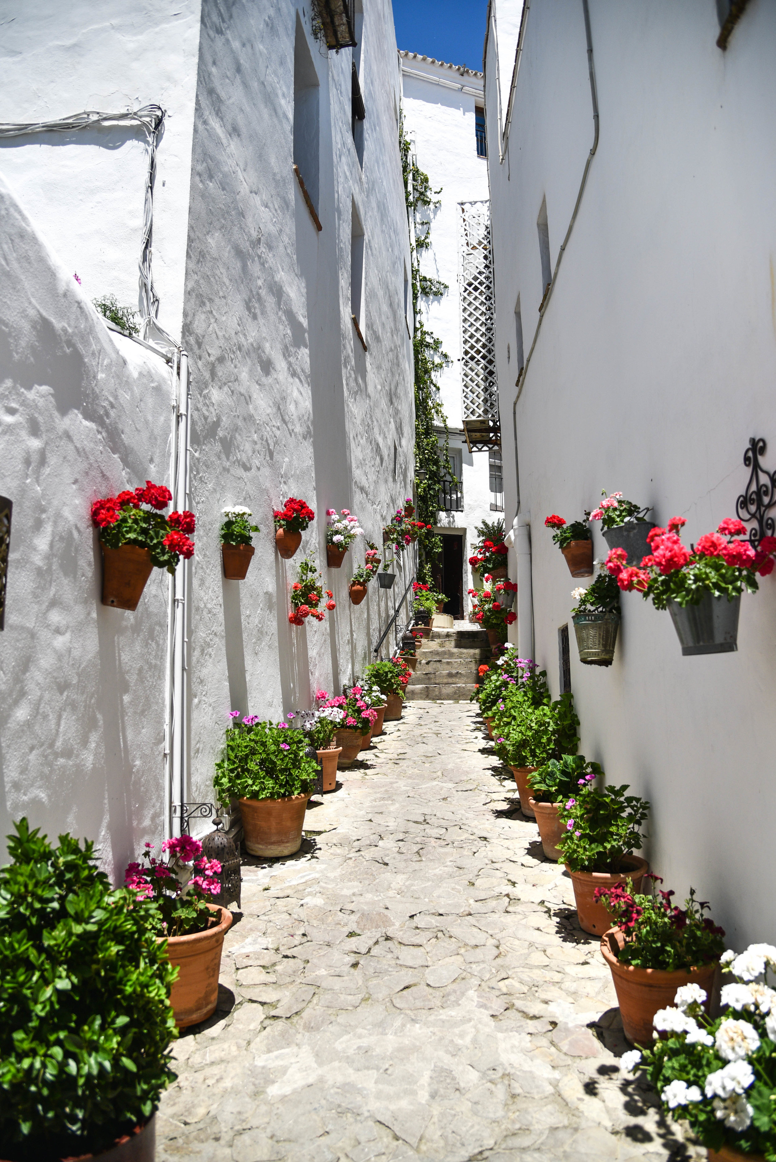 The geranium-filled alley behind La Casa del Califa