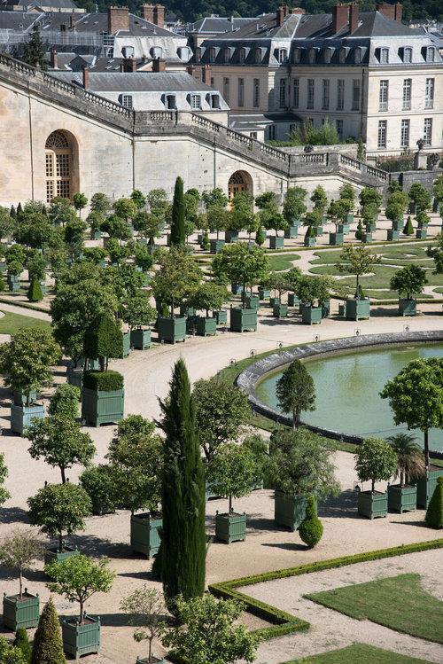 Garden Dreamer | Solitude Among the Beauty of Versailles