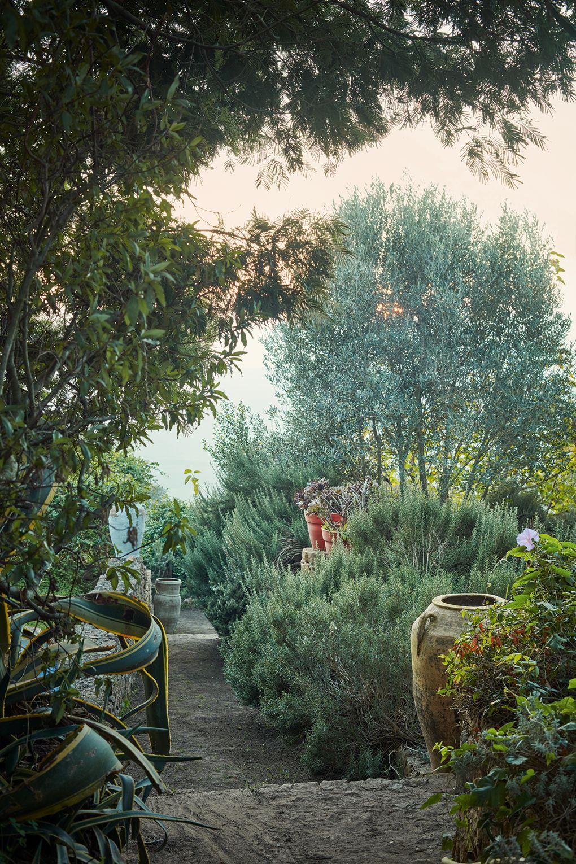 ROSE & IVY Journal A Magical Moroccan Garden