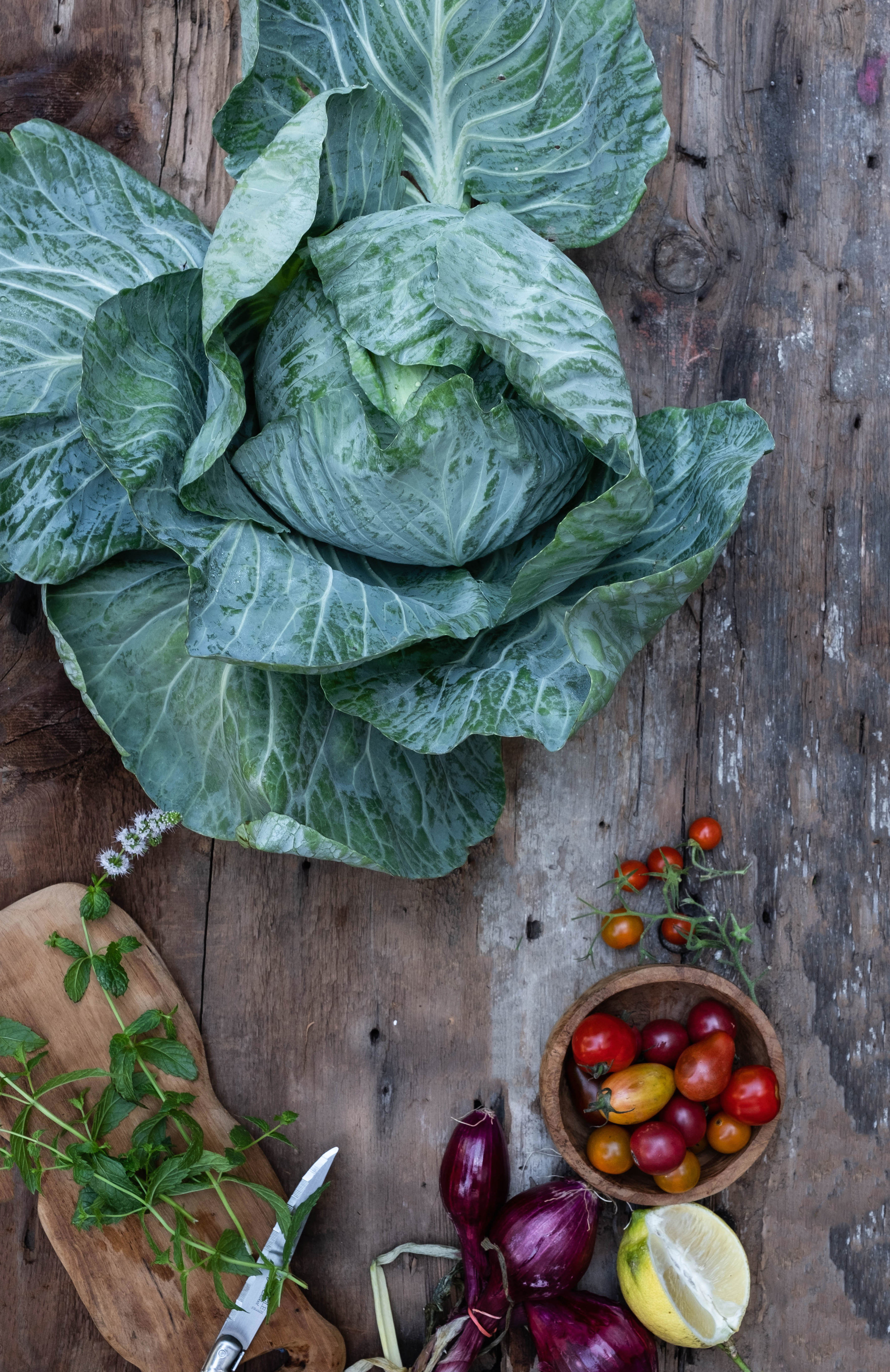 At the ROSE & IVY Journal Market | Cabbage + Cabbage & Tomato Tabouleh
