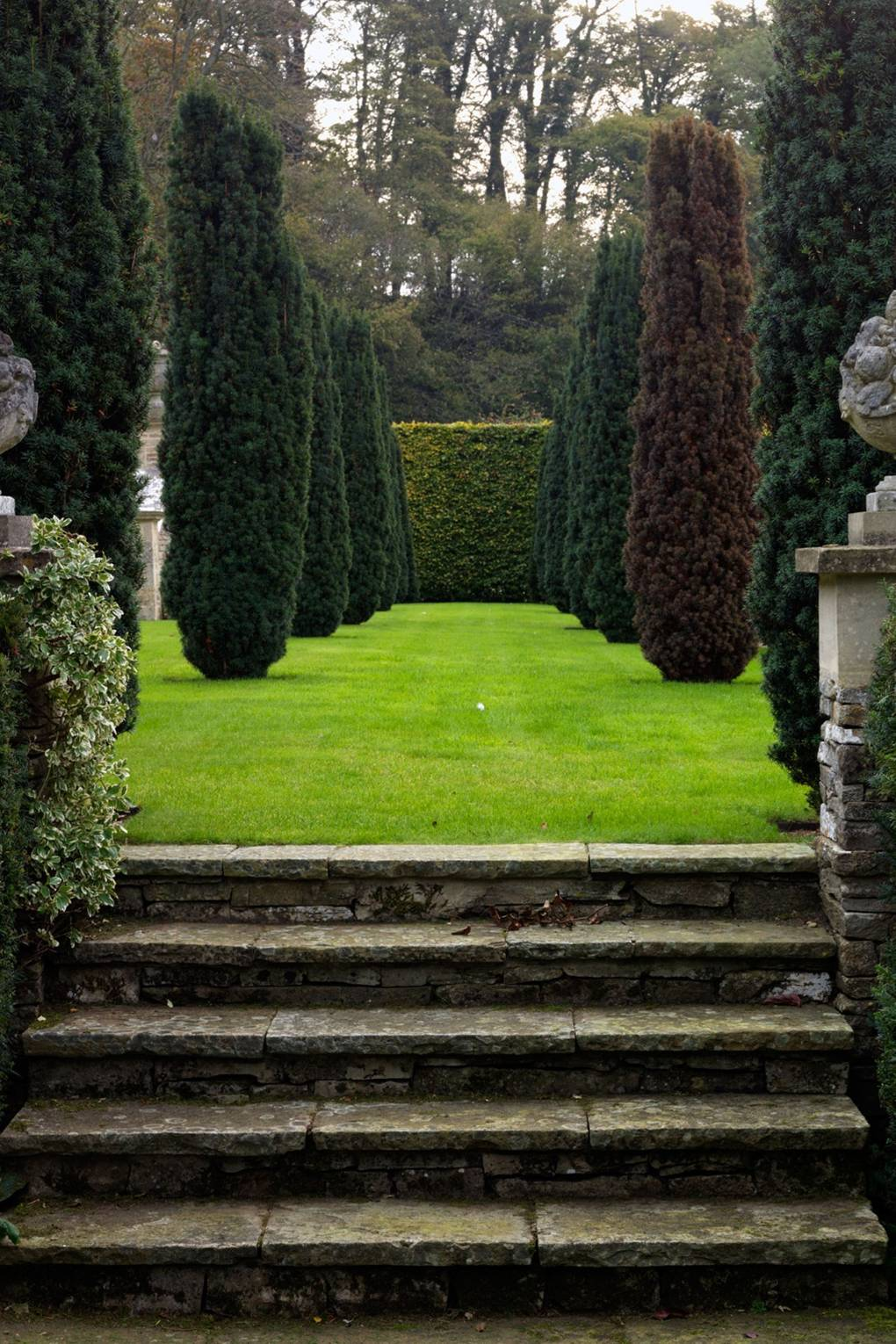 ROSE & IVY Journal Garden Dreamer | A Garden Where Topiaries Are The Star