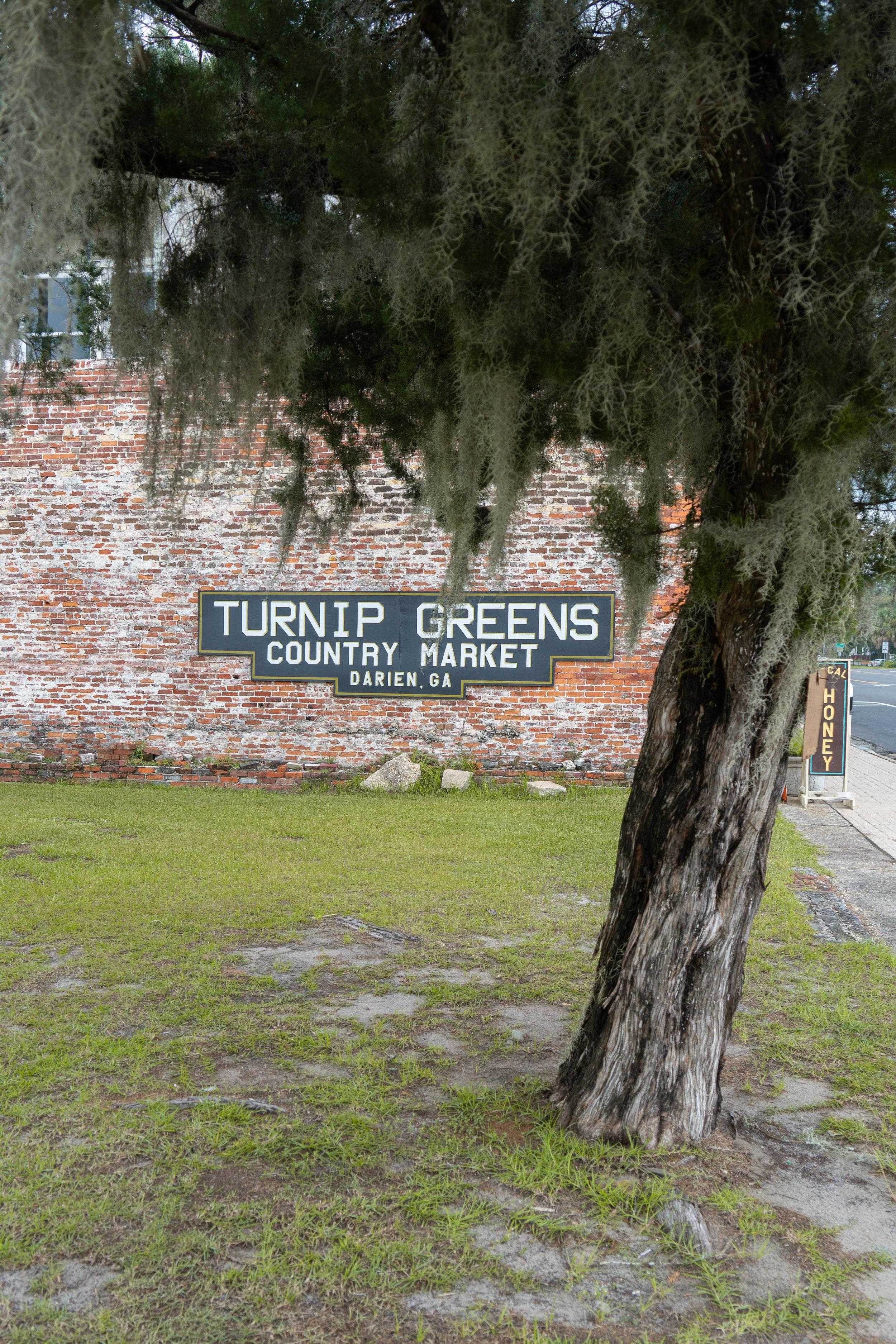 A Trip off the Coast Darien Georgia Turnip Greens