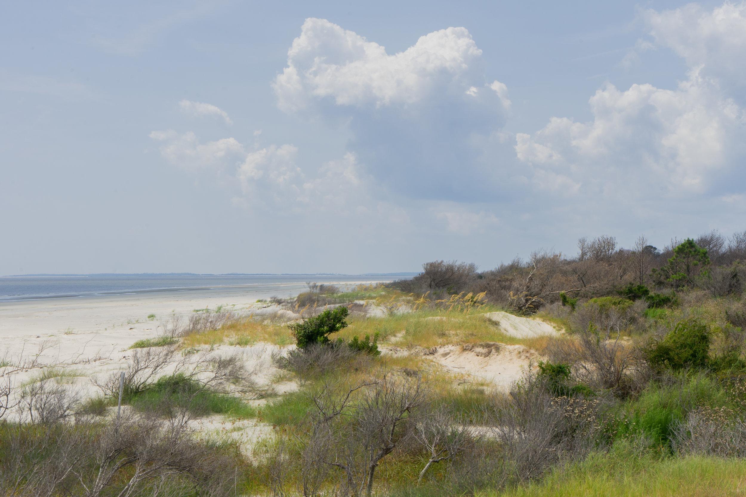 A Trip off the Coast Sapelo Island Nanny Goat Beach