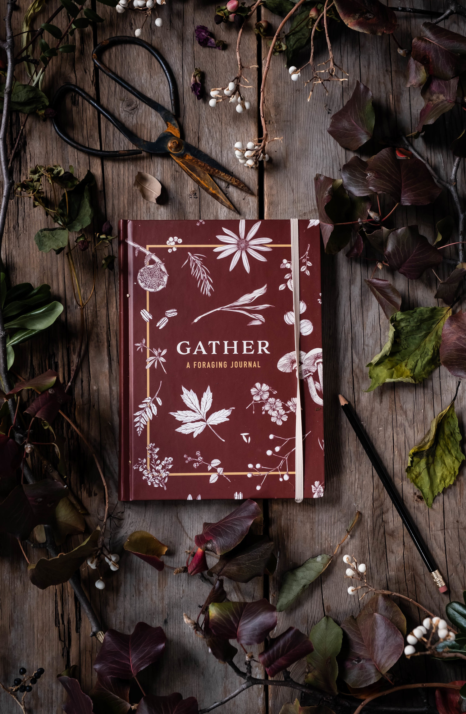 ROSE+&+IVY+Journal+Holiday+Gifting+Gather-+A+Foraging+Journal.jpeg
