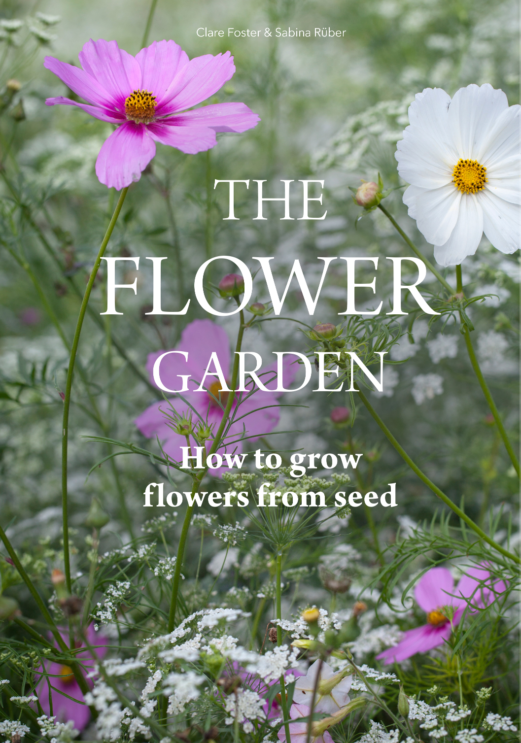 ROSE & IVY In Bloom | A Guide to Growing Flowers from Seeds with Flower Expert Clare Foster