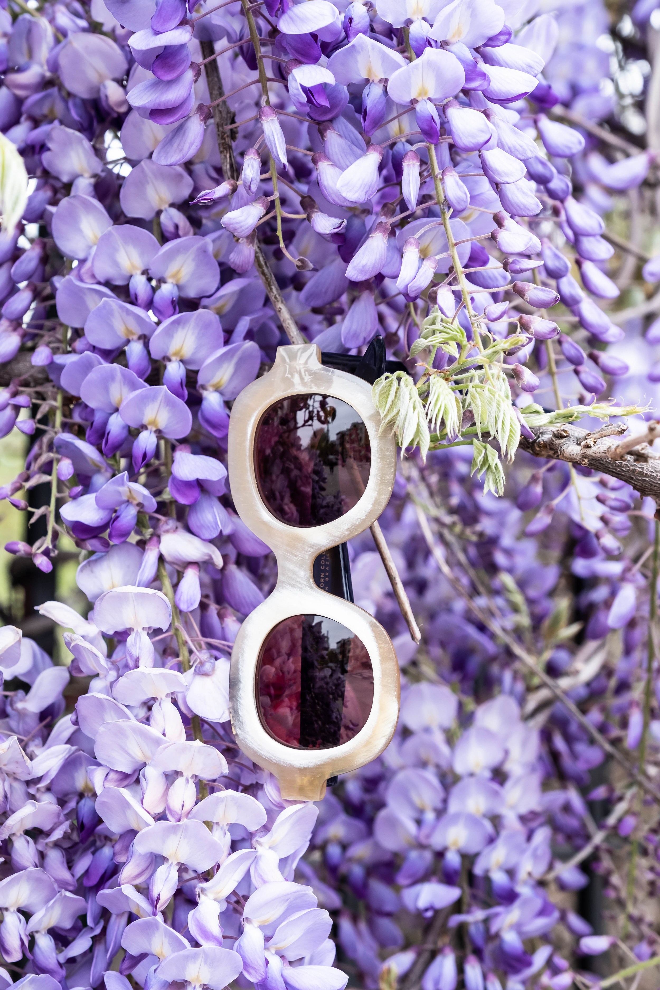 ROSE & IVY Sun's Out Glasses On | Our Favorite New Sunglasses  LAPIMA