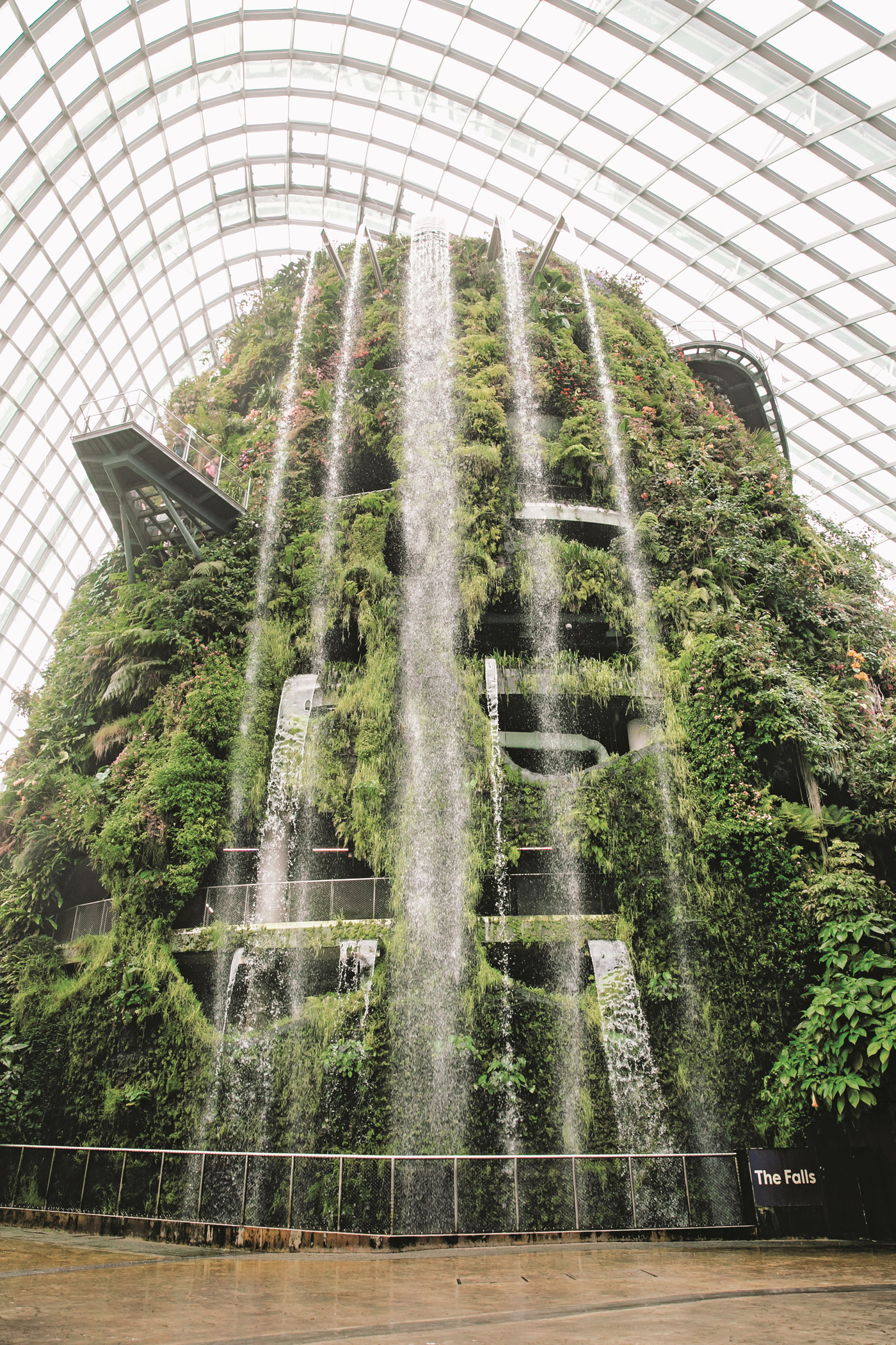 CLOUD FOREST, Gardens by the Bay, Singapore. Photography copyright © India Hobson and Magnus Edmondson 2018.