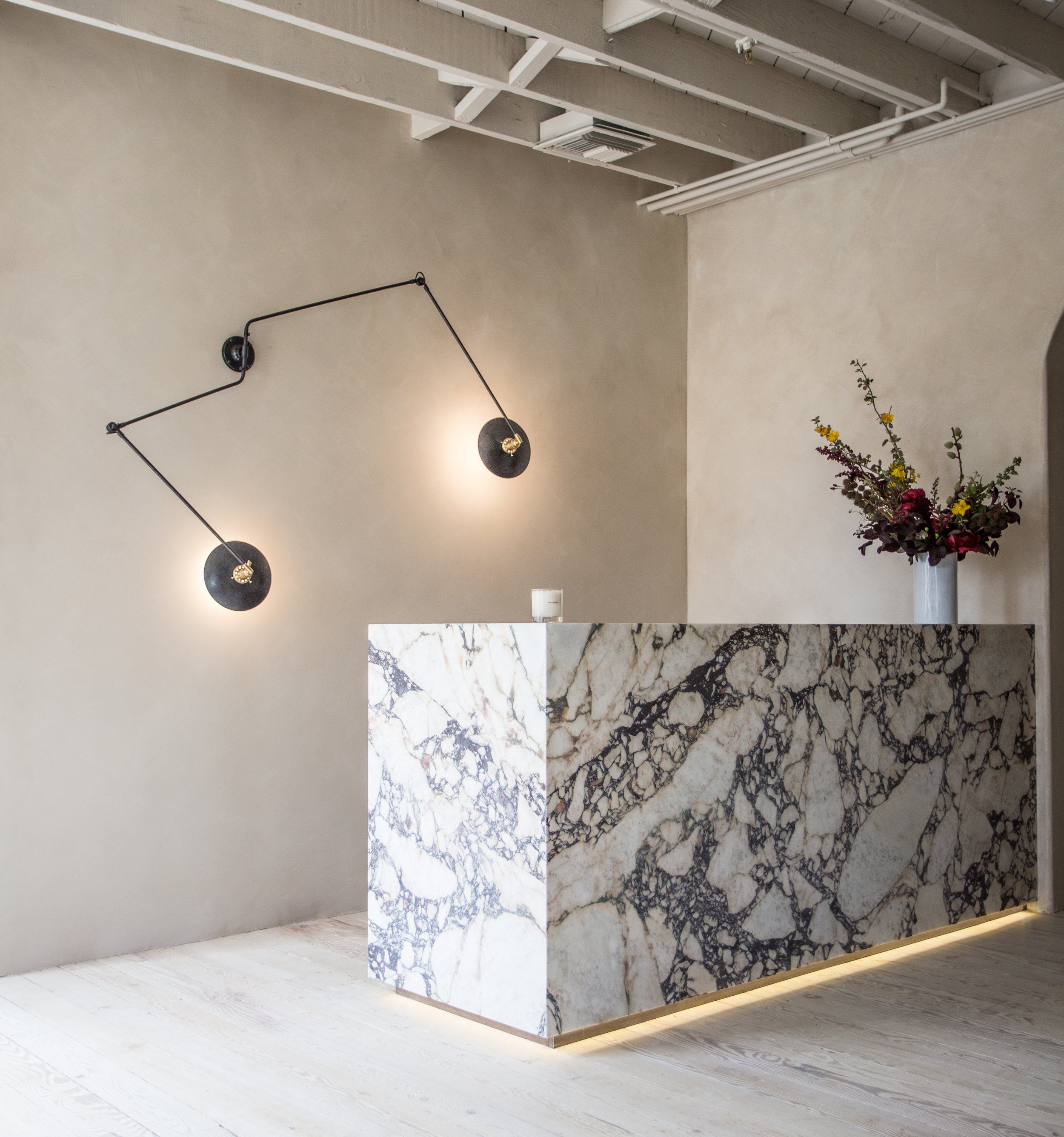 ROSE & IVY A Peak Inside | Esthetician Shani Darden New LA Studio