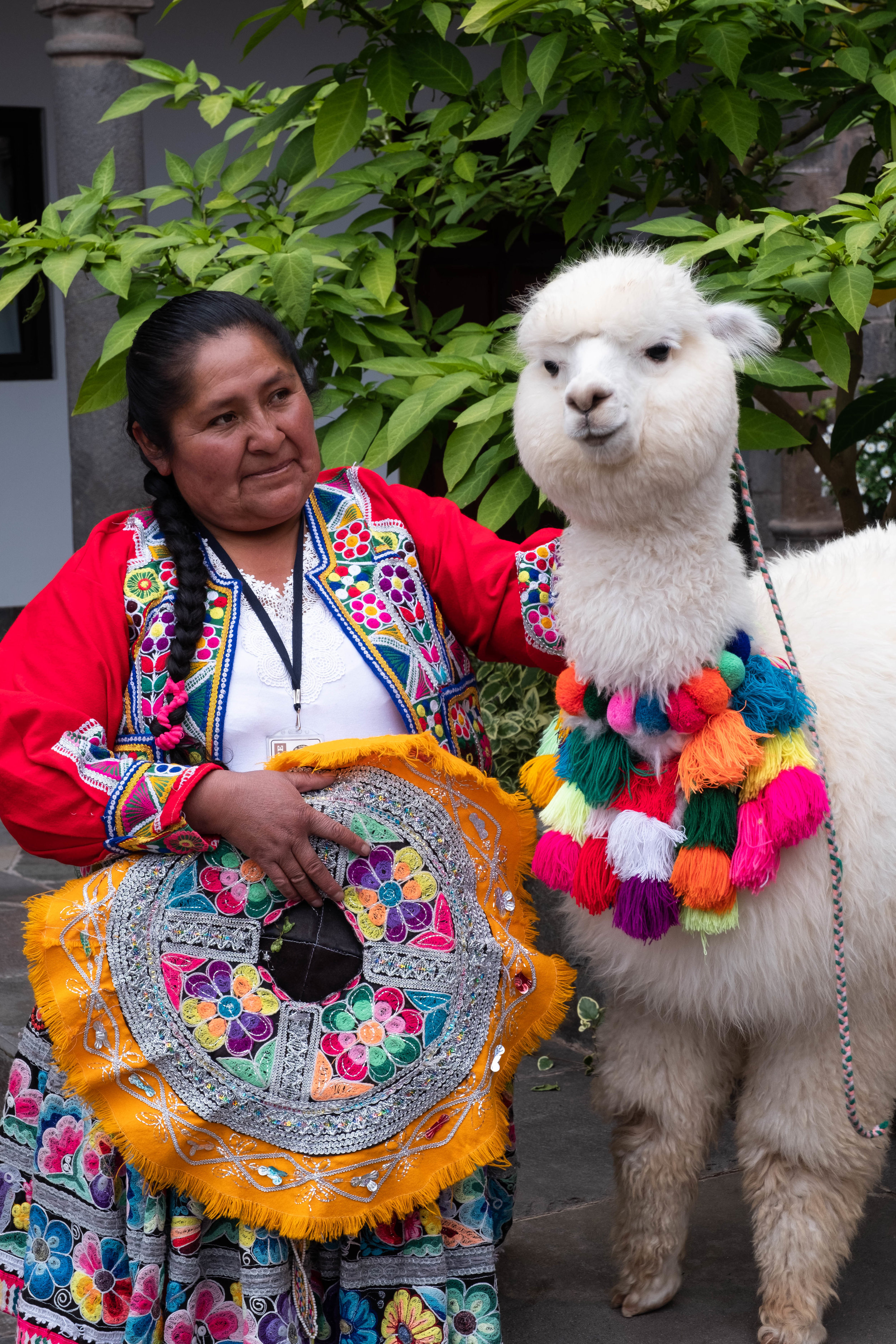 The hotel offers the chinchero experience right in the hotel's courtyard. Here a local maker is with a friendly alpaca named Panchita.