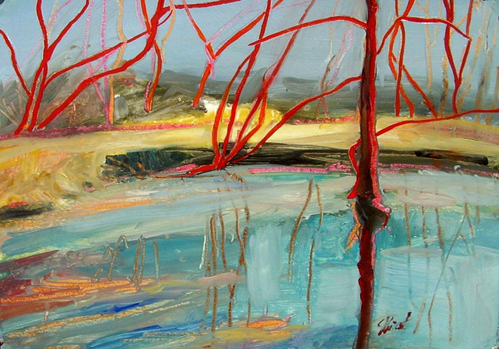 Choupique Reflections (2) by Susanne Vincent