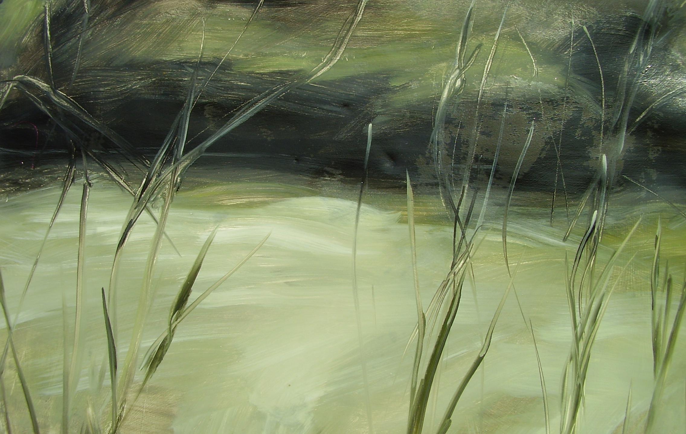 Cordgrass Fields by Susanne Vincent