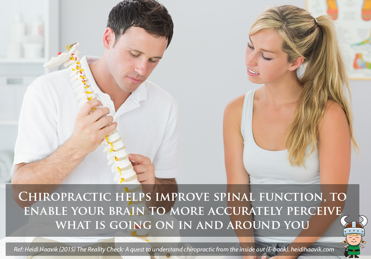Spinal Function and your Wanaka Chiropractor