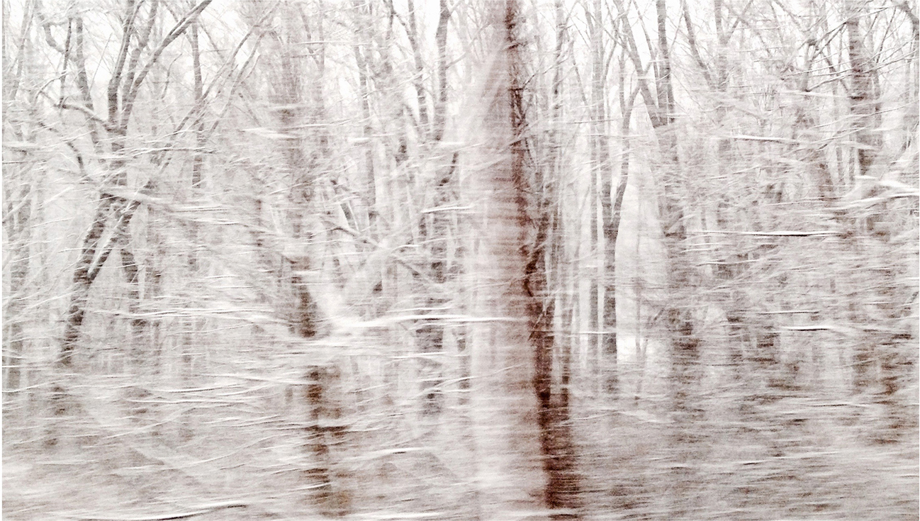 "Winterscape 3  23 x 32"" Archival Pigment Print on Hahnemühle German Etching Fine Art Paper, Rising Museum Acid Free Mounting Board, Acrylite Non-glare UV Filtering Plexi-glass. Oak Custom Frame"