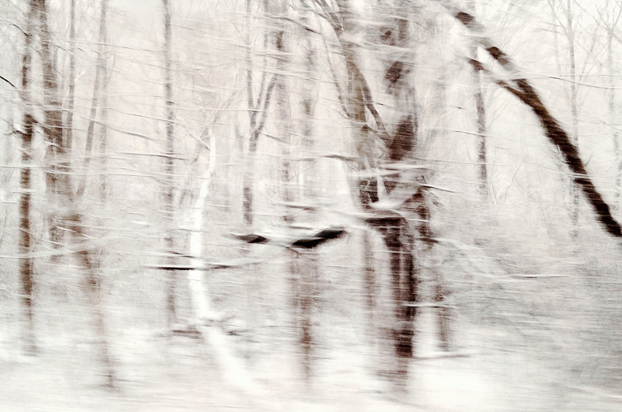 "Winterscape 10  27 x 32"" Archival Pigment Print on Hahnemühle German Etching Fine Art Paper, Rising Museum Acid Free Mounting Board, Acrylite Non-glare UV Filtering Plexi-glass. Oak Custom Frame"