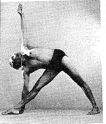utthita-trikonasana-yoga-pose-iyengar
