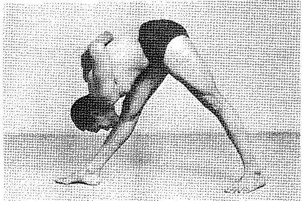 Parsvottanasana Iyengar