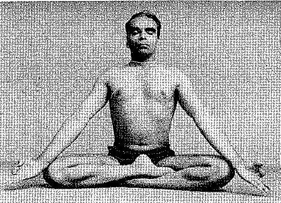 Siddhasana Iyengar